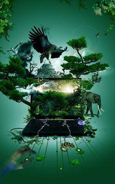 Virtual Nature by ricardofx