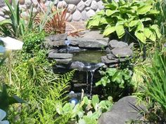 Pond with waterfall is a relaxing feature to a garden!