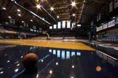 butler university basketbll is where it's at! Butler Basketball, Basketball Rules, Basketball Court, Butler University, When I Dream, Indiana State, Amazing Adventures, College, Sports