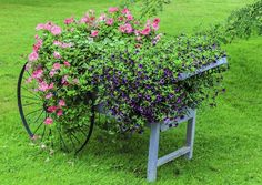 Photo about Vivid purple and pink flowers in a vintage wheelbarrow. Image of barrow, ornamental, antique - 33516994 Wheelbarrow Decor, Garden Cart, Fruit Garden, Colorful Flowers, Pink Flowers, Garden Spaces, Summer Garden, Yard Art, Garden Landscaping