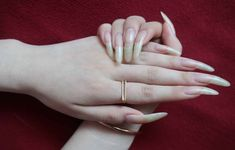 Long Fingernails, Long Nails, Sexy Nails, Stiletto Nails, Pretty Hands, Beautiful Hands, Cat Nails, Cute Profile Pictures, Ulzzang Girl
