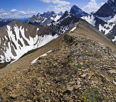 Tent Ridge hike/trail run
