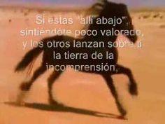 NO TE RINDAS! (Parábola del caballo)
