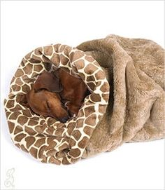 Perfect Dachshund blanket for Burrowing! Yep, a doxie thing! I think my Chihuahua would love this too, not to mention my cats.