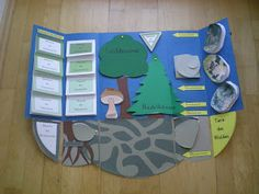 Lapbooks in der Grundschule: Sachunterricht Wald
