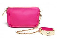 CCSkye bag with wristlet -yes please