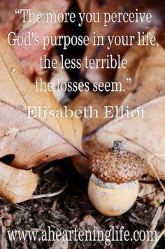 Elizabeth Elliiot Gren