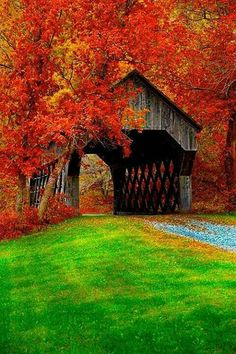 Covered bridge near Chelsea, Vermont bp. Covered bridges are great, If I win the Encore, I would love to take a trip through the countryside and through the covered bridges. Beautiful World, Beautiful Places, Simply Beautiful, Old Bridges, New England Fall, Autumn Scenes, Fall Pictures, Old Barns, Covered Bridges