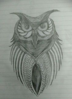 Owl,(İncisözlük.com),amateur