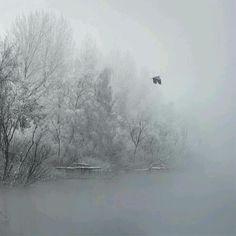 Chilling fog
