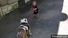 Watch this Determined Baby Attempt to Walk His Stubborn 80-Pound Bulldog  - CountryLiving.com