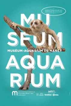 Absolutely love this poster design (part of a series, click through to see all designs) for Museum-Aquarium De Nancy. It's very bold and eye-catching. Also love the typography.
