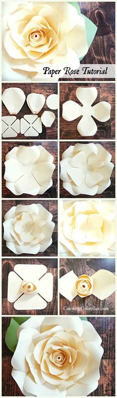 Paper rose tutorial. Step by step paper rose instructions.