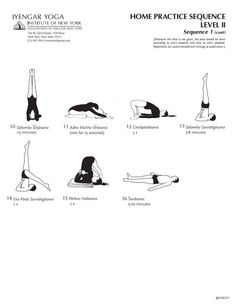 Home Iyengar Yoga Practice Level 2, Sequence 1b by the Iyengar Institute in NY