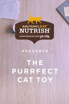 Cats love toys. And luckily for your cat, almost everything is a toy.