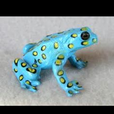 Poison Dart Frog Find the largest selection of organic gluten free dog treats in the world. Www.boneyardbakery.net
