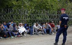 Δεύτερο φράχτη στα σύνορα σχεδιάζει να υψώσει η Ουγγαρία www.sta.cr/2tea7