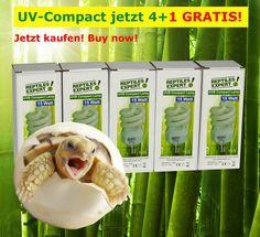 www.reptilesexpert.com Jetzt NEU: UVB-Compact Lampen für das Terrarium 4+1 GRATIS Aktion. Ideal für Reptilien, die den Schatten bevorzugen und Jungtiere. Auch für Amphibien geeignet. Compact, Baby Cubs, Terrariums, Amphibians, Save Energy, Action, Shadows