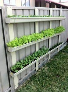 Gutter Gardens – Sustainably Sustainably DIY Garden Yard Art When growing your own lawn yard art, re Gutter Garden, Veg Garden, Vegetable Garden Design, Garden Types, Vegetable Gardening, Small Vegetable Gardens, Backyard Vegetable Gardens, Fence Garden, Gardening Books