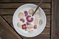 Koldskål - 1,1 liter vegansk koldskål: 1 liter sukkerfri soyamælk 4 lime (eller 1 1/2 citron til nød) 2 spk rørsukker 1/2 spk vaniljesukker Tilbehør: Kammerjunkere