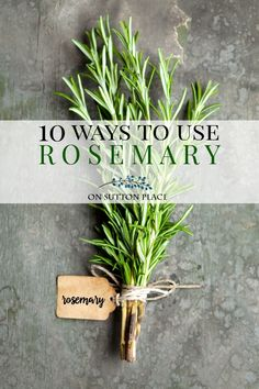 Rosemary Ideas: recipes, decor & more. Easy ways to use rosemary in your cooking, decor & beauty products. Things to do with rosemary. How to use rosemary.