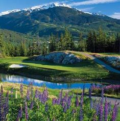 Whistler in the summer - perfect for the non-skier in me!