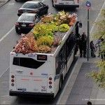 Going Green in NYC, gardens on top of city buses!  BioBus.