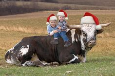 Jp actually wants to do this for family pics. Add hats and will have something to use for Christmas cards too !