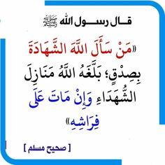 Islam Hadith, Islam Quran, Coran Islam, Islamic Information, Pretty Sky, Prayers, Religion, Quotes, Neurology