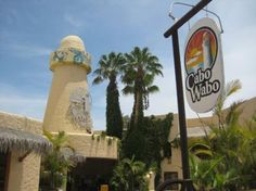 Stop here for an afternoon drink - Cabo Wabo Mexico | Cabo Wabo, Cabo San