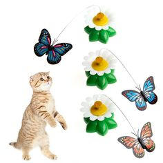 Delight eShop Electric Rotating Butterfly Cat Rod Funny Pet Cat Toys Kitten Play Toy *** Learn more by visiting the image link. (This is an affiliate link and I receive a commission for the sales) Dog Chew Toys, Pet Toys, Kittens Playing, Cats And Kittens, Best Interactive Cat Toys, Cat Themed Gifts, Kitten Toys, Funny Toys, Cat Accessories