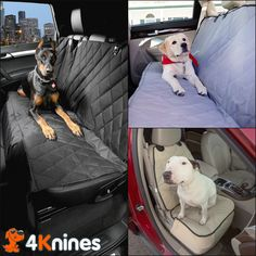 Looking for an awesome dog seat cover?  4Knines Dog Seat Covers will protect your car from claws, fur, and dirt.  With these covers you won't hesitate to take your furry copilot for a ride.  www.4Knines.com