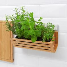 IKEA - RIMFORSA, Basket, bamboo, The bamboo basket can either be used on your countertop or hung on the wall to free up more space. Made from a durable, food-approved material. May be combined with RIMFORSA rail. Hardware for the rail included. Kitchen Plants, Ikea Kitchen, Kitchen Furniture, Kitchen Walls, Kitchen Storage, Kitchen Ideas, Ikea Storage, Wall Storage, Storage Racks