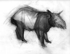 el libro negro: malayan tapir