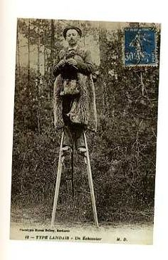 A shepherd knitting, while sitting on a small, long, stool, with stilts on his legs. In several countries the shepherds sat up high to keep an eye on their flocks. They would direct their dogs accordingly. But, took advantage of the time, knitting.
