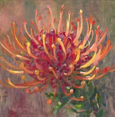 Vivacity 100 R Acrylic Flowers, Abstract Flowers, Watercolor Flowers, Watercolor Art, Protea Art, Protea Flower, Australian Native Flowers, Mini Paintings, Botanical Art