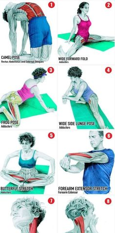 36 Pictures To See Which Muscle You're Stretching http://itz-my.com