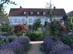 Mandelmanns Trädgårdar (Gardens) in Rörum, Sweden. One of the my dream places. Love the gardens, food, art, farm and cultural programs!