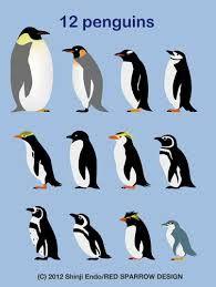 ペンギン イラスト - Google 検索