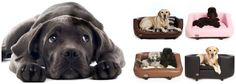 Chester & Wells Dog beds are manufactured in the UK and look great in any home. See the range of Chester & Wells dog beds online now at great prices Designer Dog Beds, Online Pet Store, Online Pet Supplies, Chester, Your Pet, Labrador Retriever, Wellness, Luxury, Pets