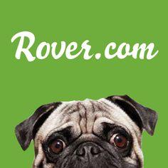 22 Best Pet Sitter Directories Images Find Pets Pet Care Career
