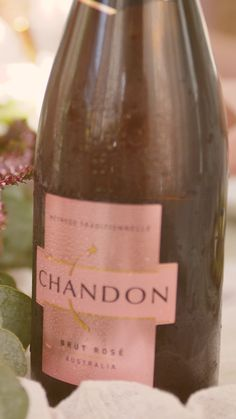 Spring has sprung and so too has the time for Chandon in Bloom. Try our new Rosé floral cocktails perfect for brunches and long lunches. Cheers to Rosé all day! Alcohol, Birthday Dinners, Brunches, Spring Has Sprung, Sparkling Wine, Edible Flowers, 21st Birthday, Drinking, Champagne