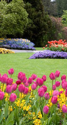 Garden Art, Flower Garden, French Garden, Cinder Block Garden, Flowers, Lilies Of The Field, Rock Garden, Beautiful Gardens, Plant Lover