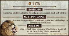 Spirit Animal: Definition and List of Totem Animals Lion Spirit Animal, Animal Spirit Guides, Lion Symbolism, Animal Symbolism, Lion Meaning, Tiger Quotes, Animal Meanings, Dream Symbols, Spiritual Animal