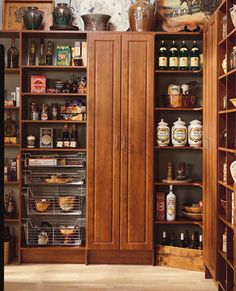Storage & Closets pantry Design Ideas