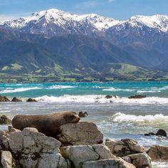 Kaikoura, NZ