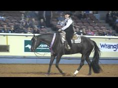 via Neo Horseman style blog by Broc Clark: 2011 AQHA World Champion Senior Western Pleasure