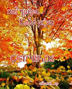 Hello October, Daily Inspiration Quotes, Cover Photos, Inspirational Quotes, Neon Signs, Seasons, Day, Life Coach Quotes, Inspring Quotes