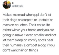 Yesss same with cats. Only place mine aren't allowed is the kitchen counter and that's not a comfy spot haha