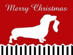 Merry Christmas Dachshund Lovers everywhere!